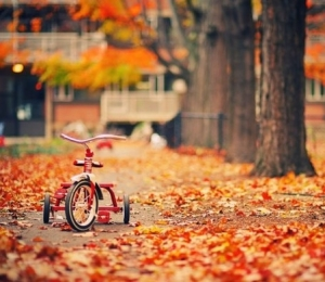 AUTUMM IS A SECOND SPRING WHERE EVERY LEAF' S A FLOWER.