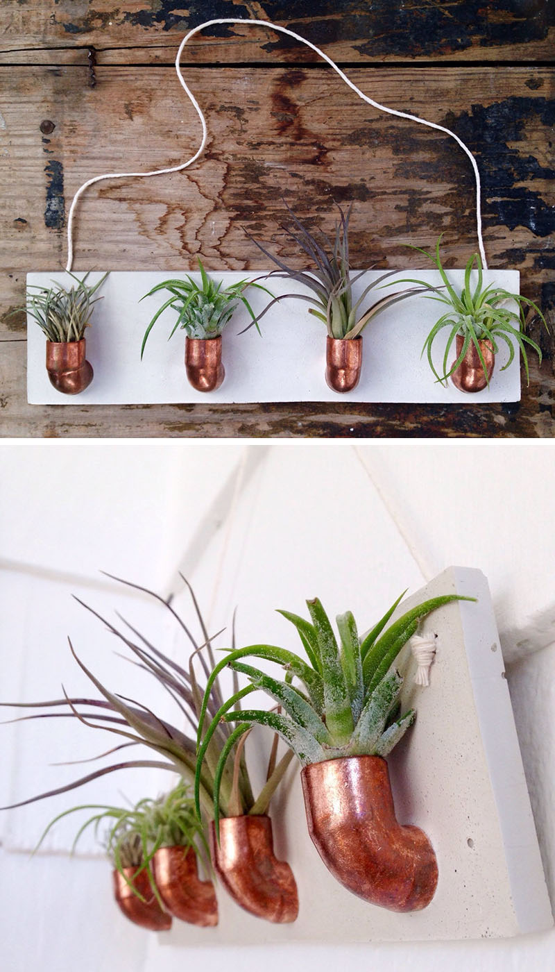 airplant-holders_250516_05