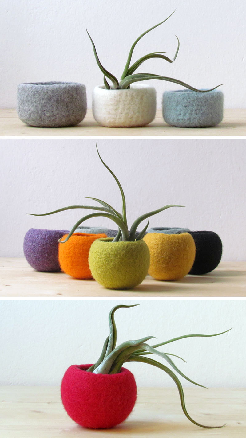 airplant-holders_250516_07