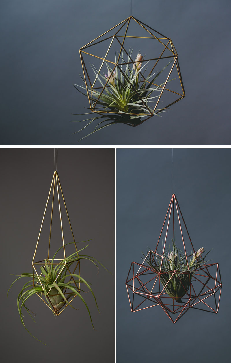 airplant-holders_250516_08