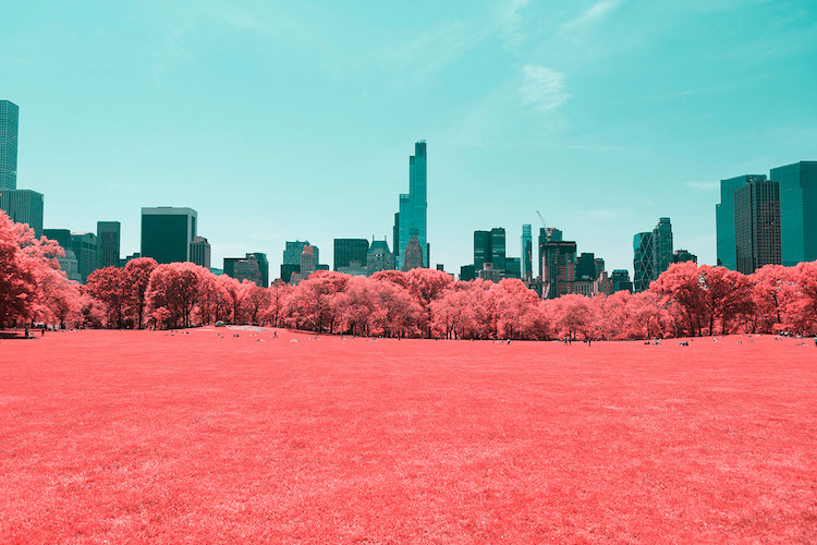 paolo-pettigiani-infrared-new-york-13