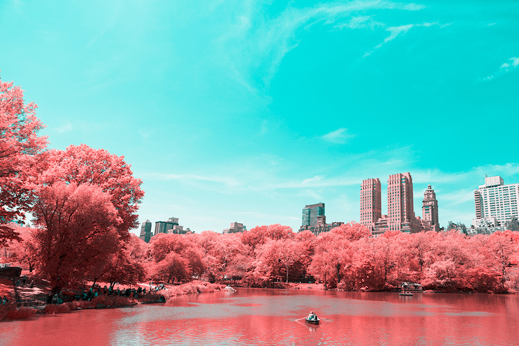 paolo-pettigiani-infrared-new-york-4